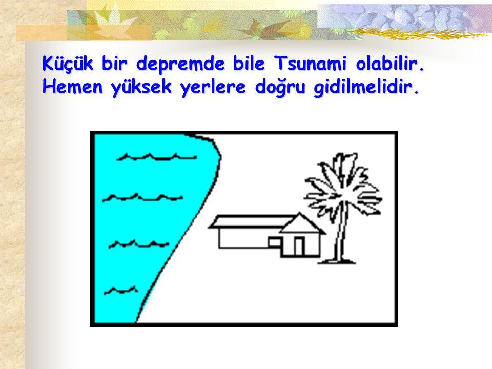 Küçük bir depremde bile Tsunami olabilir