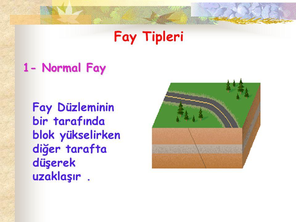 Fay Tipleri 1- Normal Fay