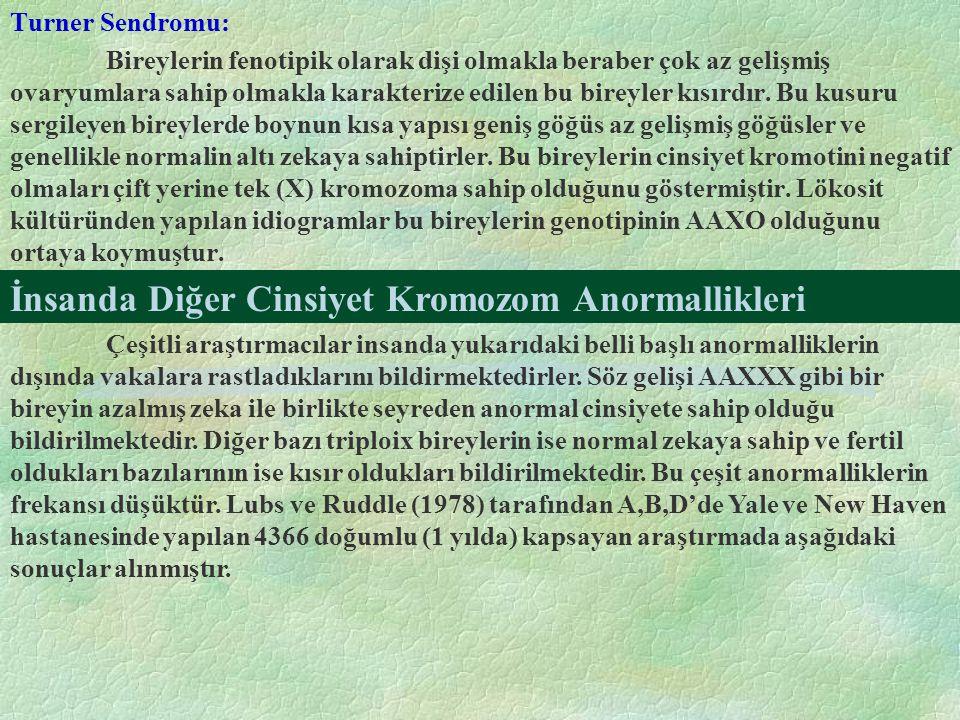 İnsanda Diğer Cinsiyet Kromozom Anormallikleri