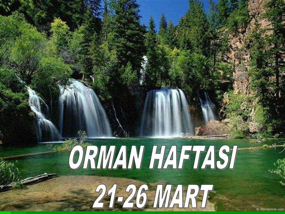 ORMAN HAFTASI 21-26 MART