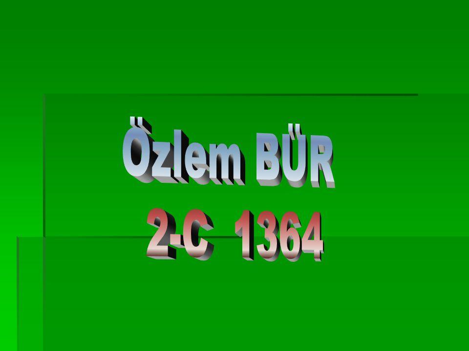 Özlem BÜR 2-C 1364