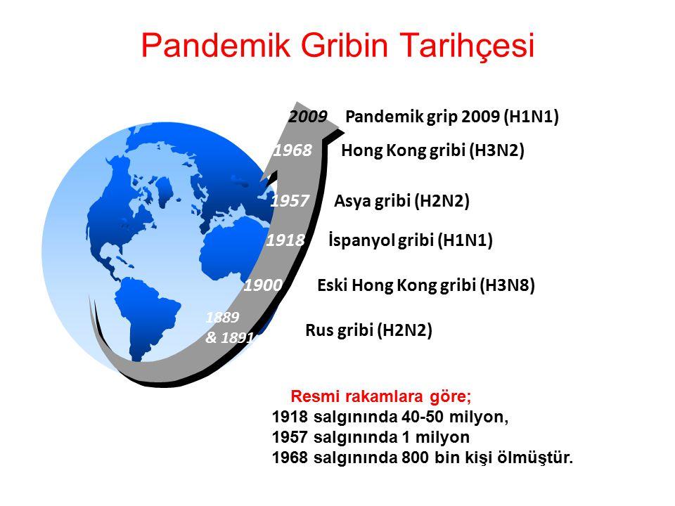 Pandemik Gribin Tarihçesi
