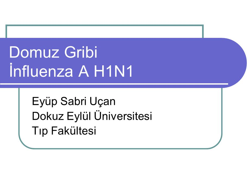 Domuz Gribi İnfluenza A H1N1
