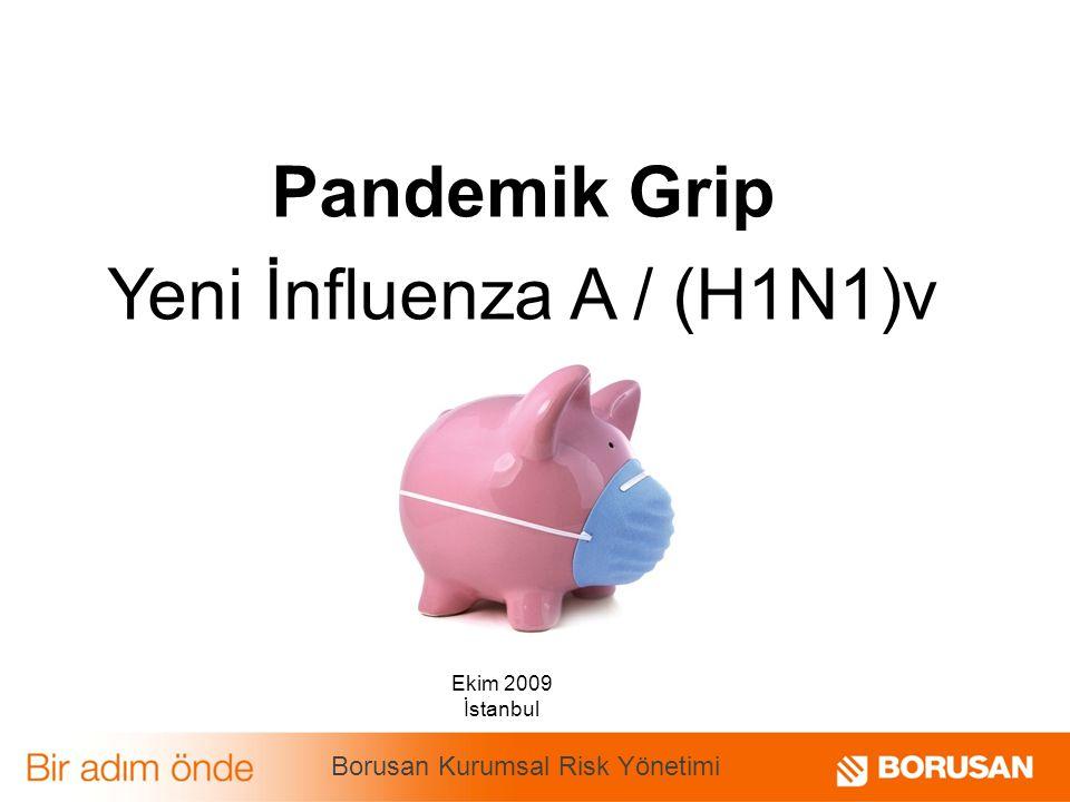 Pandemik Grip Yeni İnfluenza A / (H1N1)v