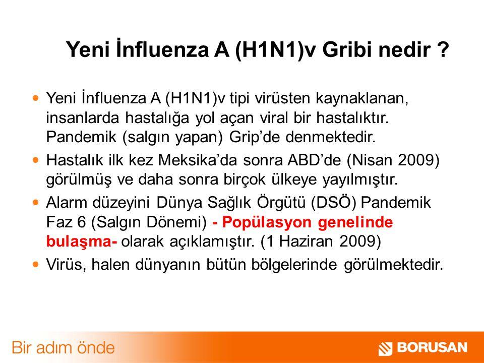 Yeni İnfluenza A (H1N1)v Gribi nedir