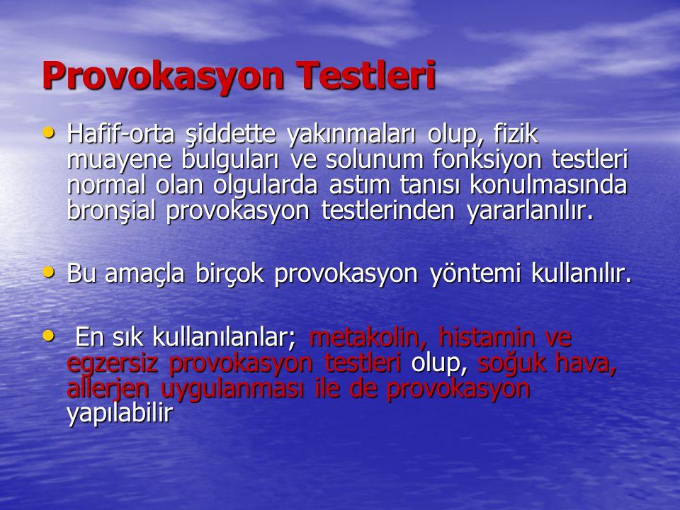 Provokasyon Testleri