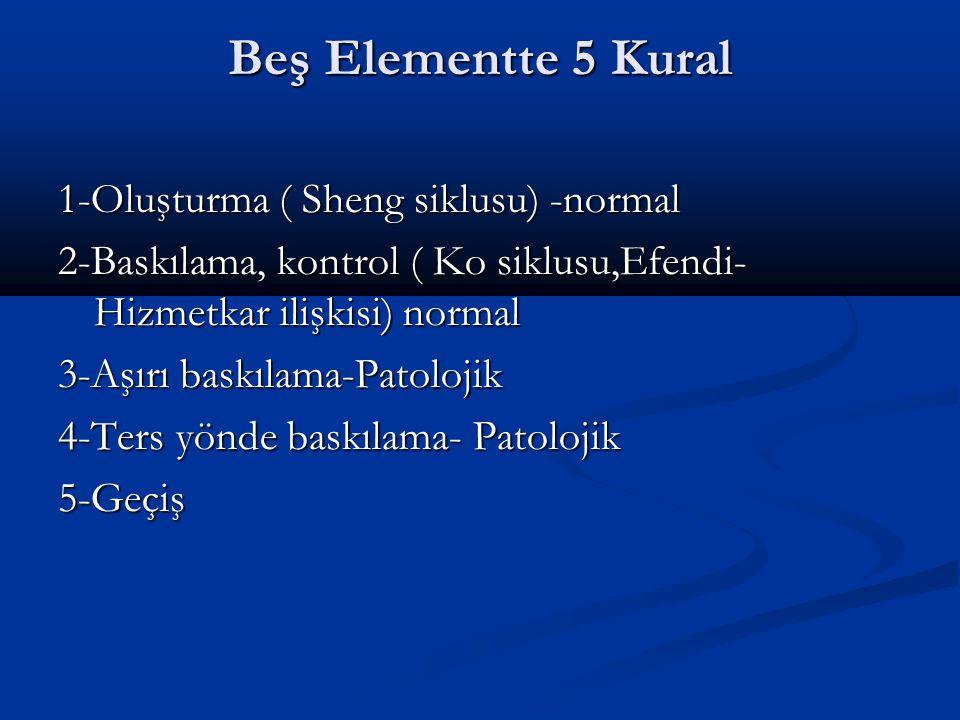 Beş Elementte 5 Kural 1-Oluşturma ( Sheng siklusu) -normal