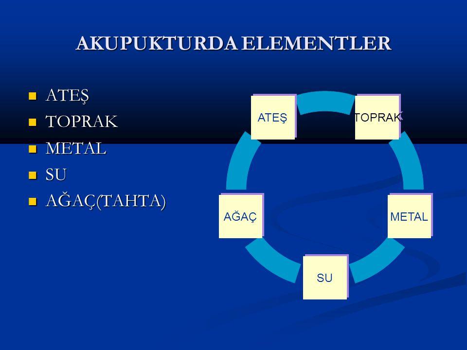 AKUPUKTURDA ELEMENTLER