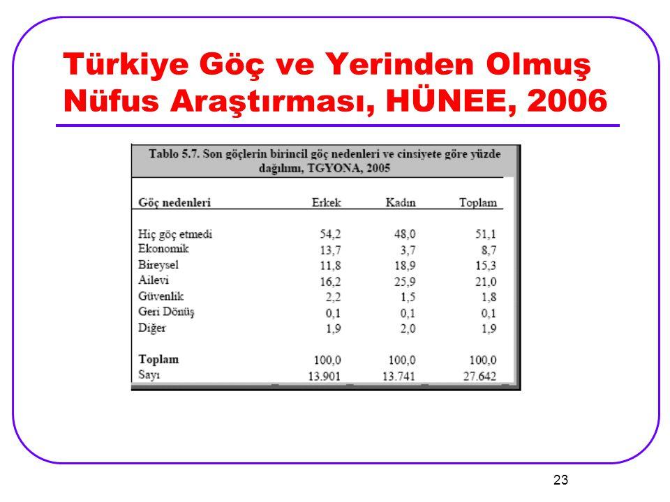 Türkiye Göç ve Yerinden Olmuş Nüfus Araştırması, HÜNEE, 2006