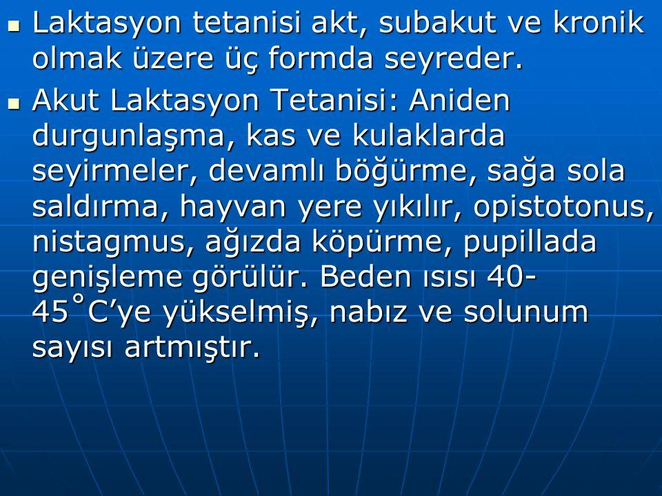 Laktasyon tetanisi akt, subakut ve kronik olmak üzere üç formda seyreder.