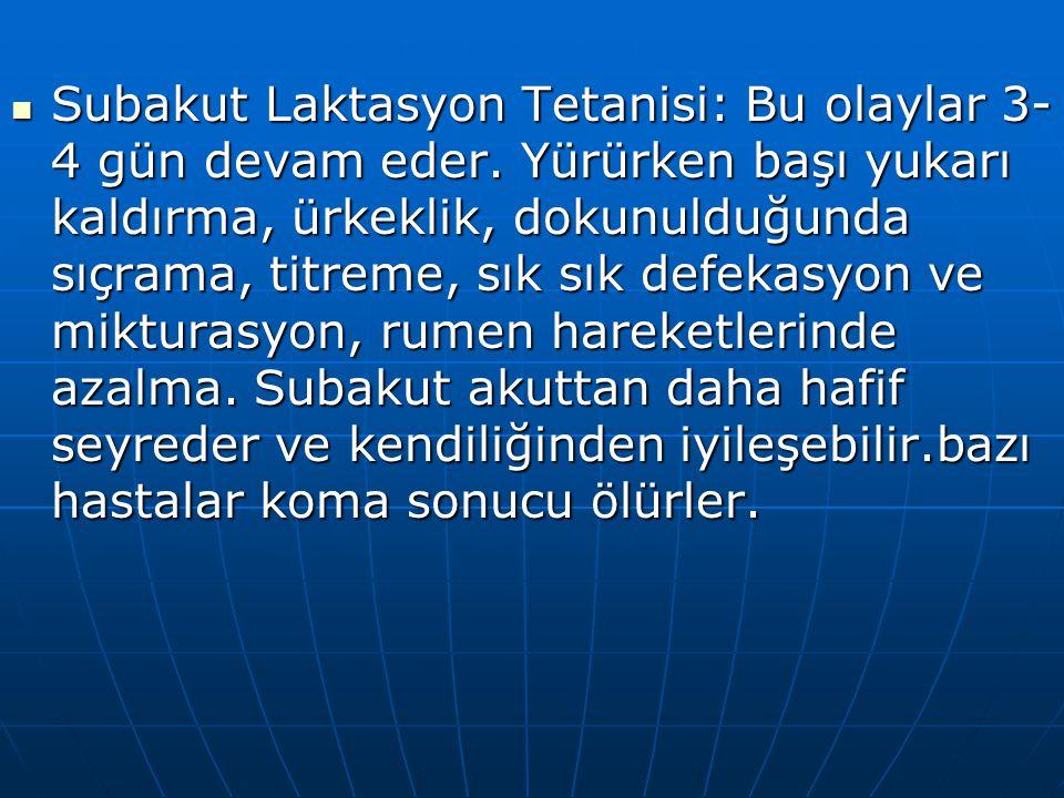 Subakut Laktasyon Tetanisi: Bu olaylar 3-4 gün devam eder