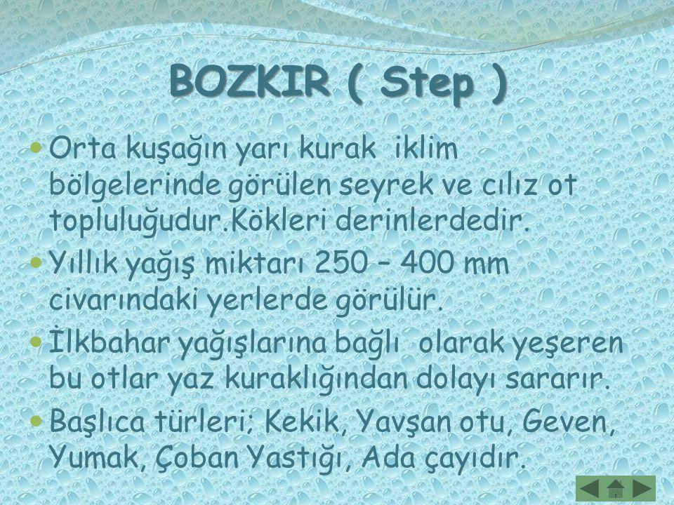 BOZKIR ( Step ) Orta kuşağın yarı kurak iklim bölgelerinde görülen seyrek ve cılız ot topluluğudur.Kökleri derinlerdedir.
