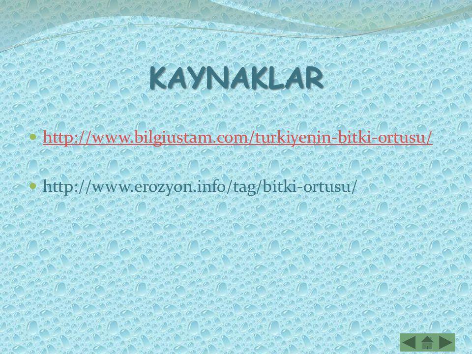 KAYNAKLAR http://www.bilgiustam.com/turkiyenin-bitki-ortusu/
