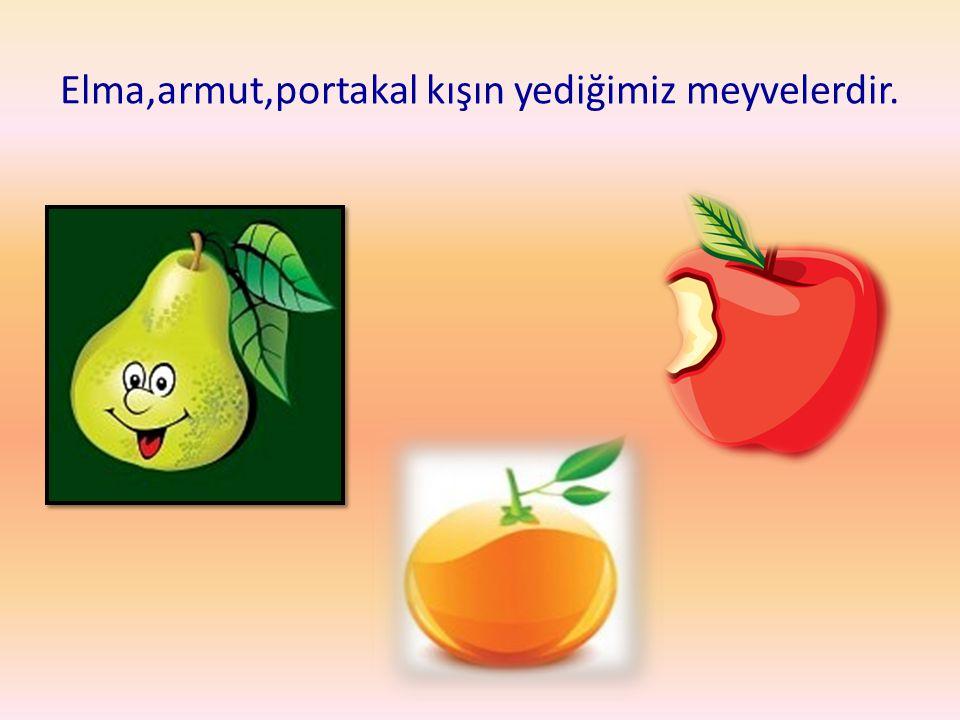 Elma,armut,portakal kışın yediğimiz meyvelerdir.