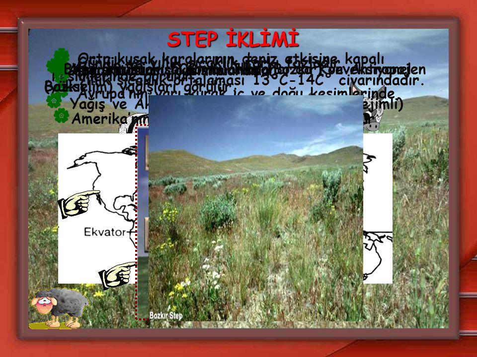STEP İKLİMİ Orta kuşak karalarının deniz etkisine kapalı kesimlerinde görülür. Avrupa'nın yarı kurak iç ve doğu kesimlerinde,