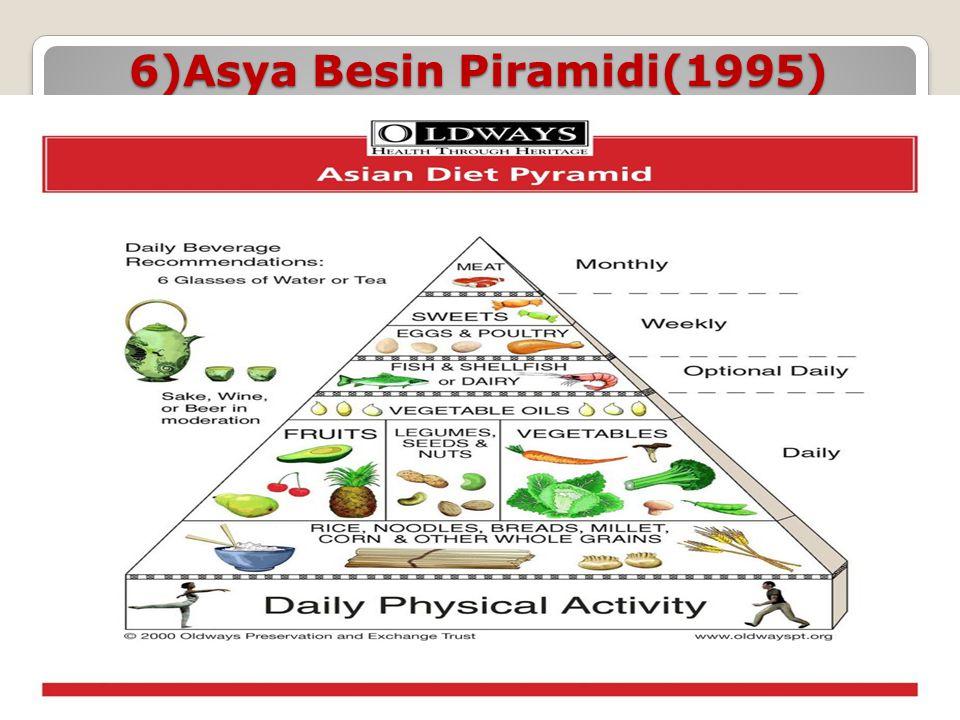 6)Asya Besin Piramidi(1995)