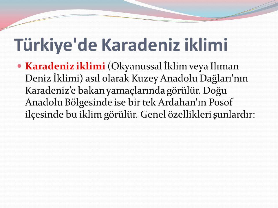 Türkiye de Karadeniz iklimi