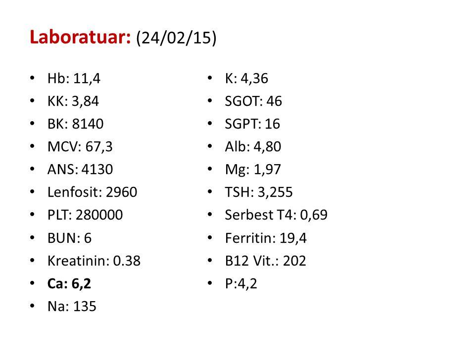 Laboratuar: (24/02/15) Hb: 11,4 K: 4,36 KK: 3,84 SGOT: 46 BK: 8140