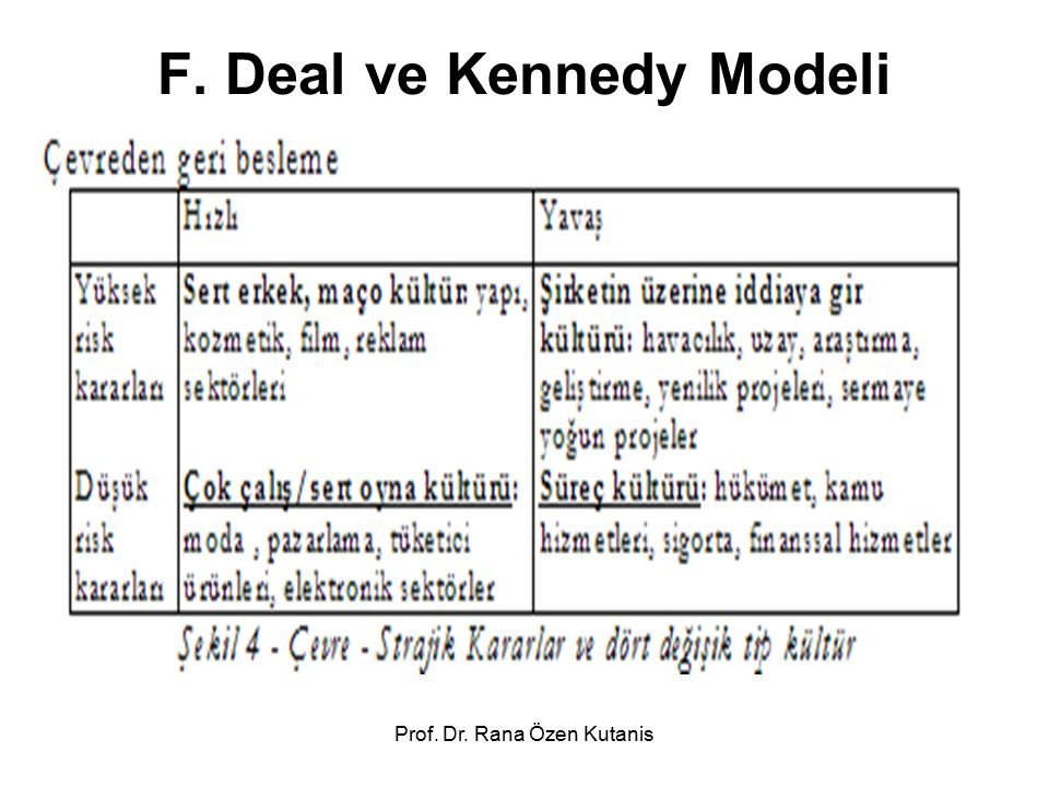 F. Deal ve Kennedy Modeli