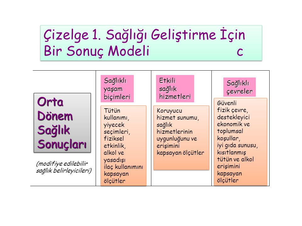Çizelge 1. Sağlığı Geliştirme İçin Bir Sonuç Modeli c