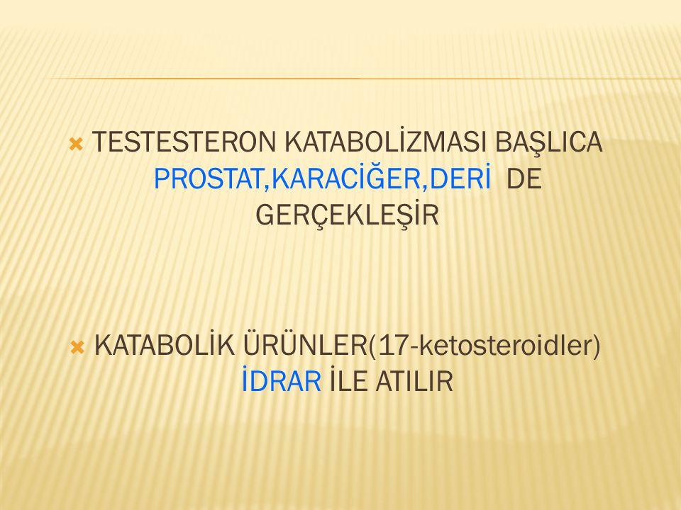 KATABOLİK ÜRÜNLER(17-ketosteroidler) İDRAR İLE ATILIR