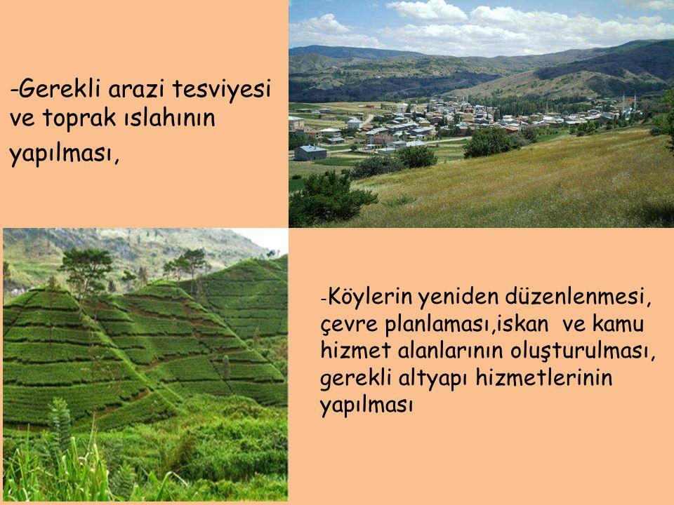 -Gerekli arazi tesviyesi ve toprak ıslahının yapılması,