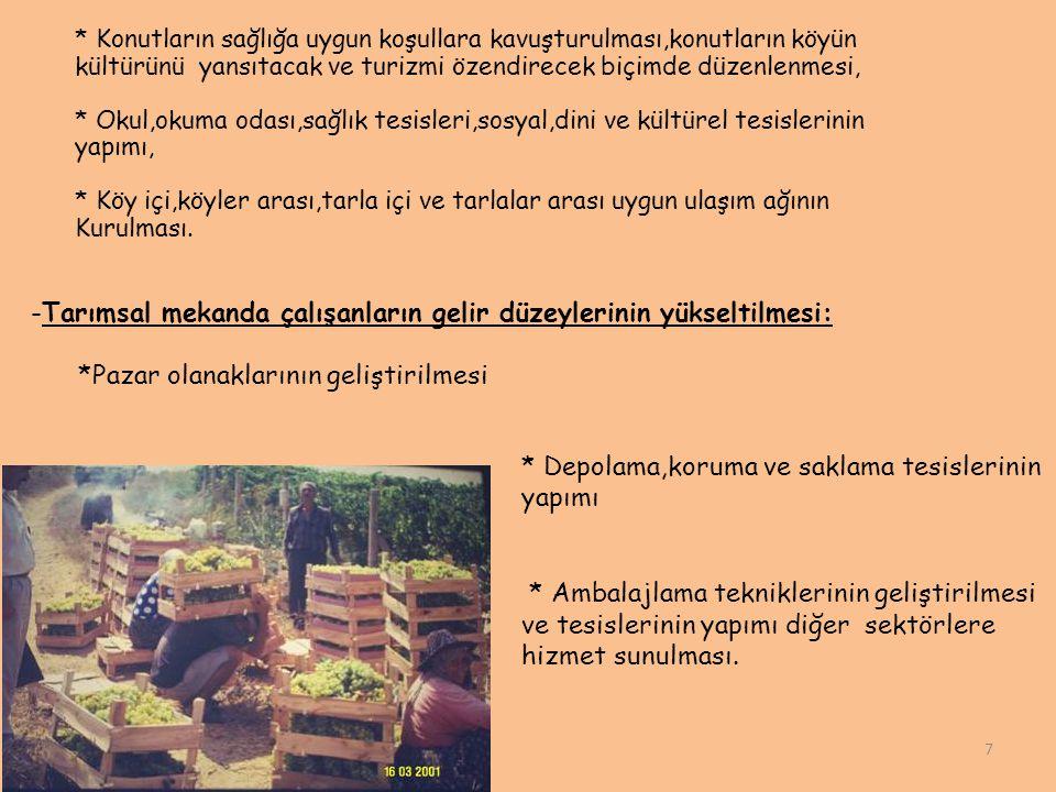 -Tarımsal mekanda çalışanların gelir düzeylerinin yükseltilmesi: