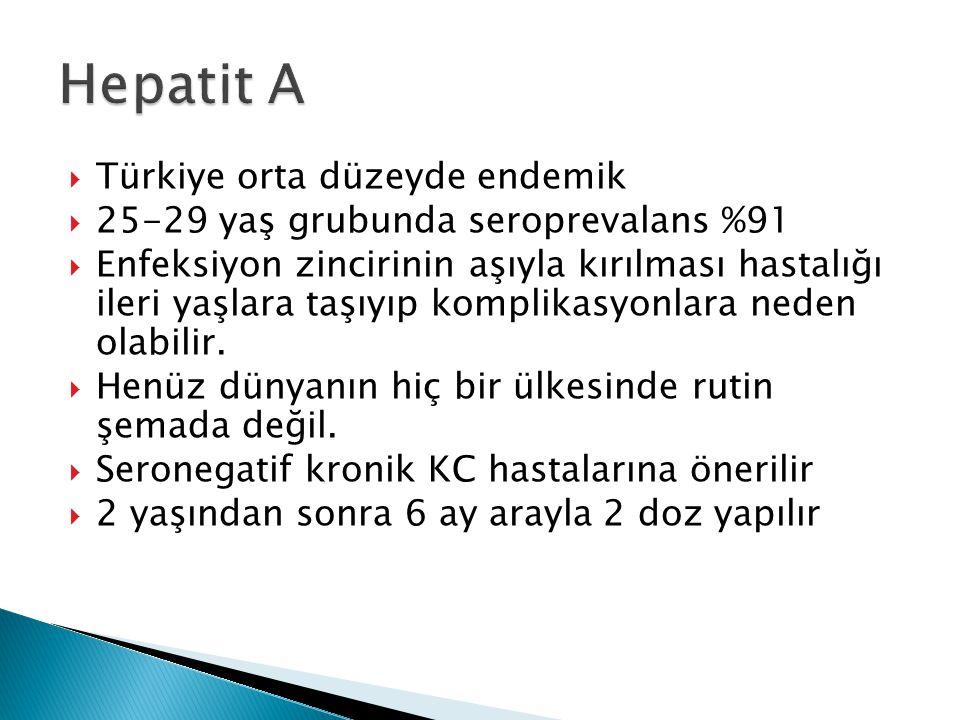 Hepatit A Türkiye orta düzeyde endemik