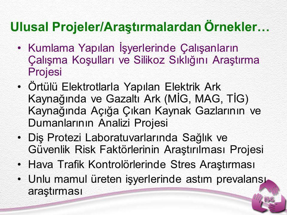 Ulusal Projeler/Araştırmalardan Örnekler…