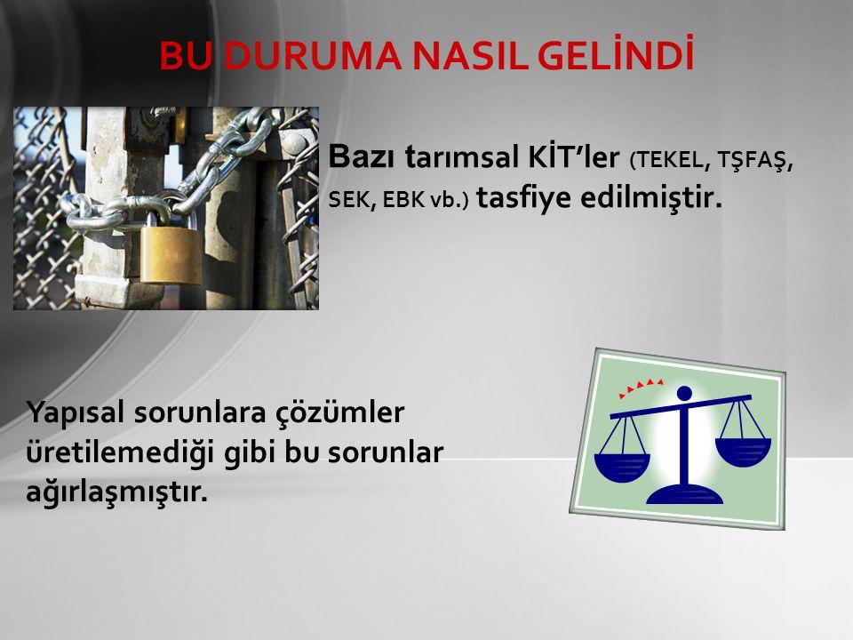 Bazı tarımsal KİT'ler (TEKEL, TŞFAŞ, SEK, EBK vb.) tasfiye edilmiştir.