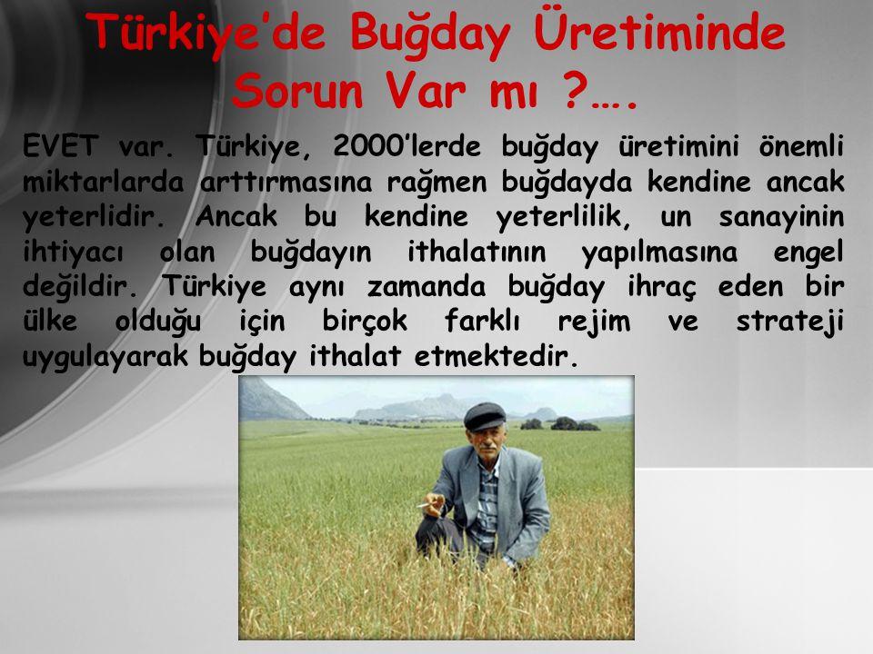 Türkiye'de Buğday Üretiminde Sorun Var mı ….
