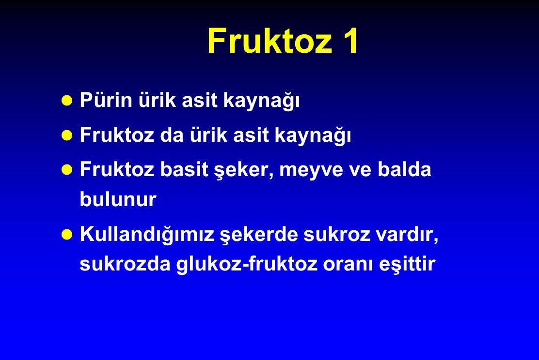 Fruktoz 1 Pürin ürik asit kaynağı Fruktoz da ürik asit kaynağı