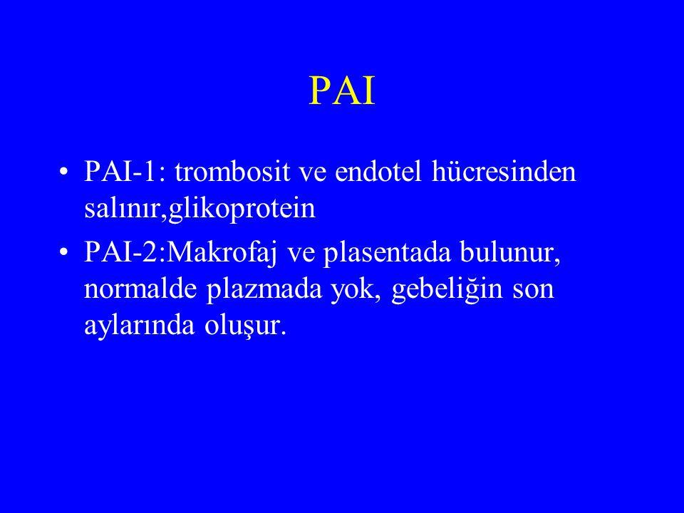 PAI PAI-1: trombosit ve endotel hücresinden salınır,glikoprotein