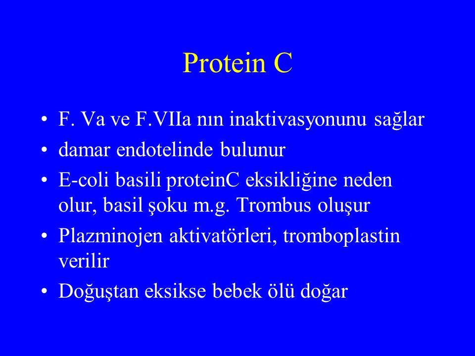 Protein C F. Va ve F.VIIa nın inaktivasyonunu sağlar