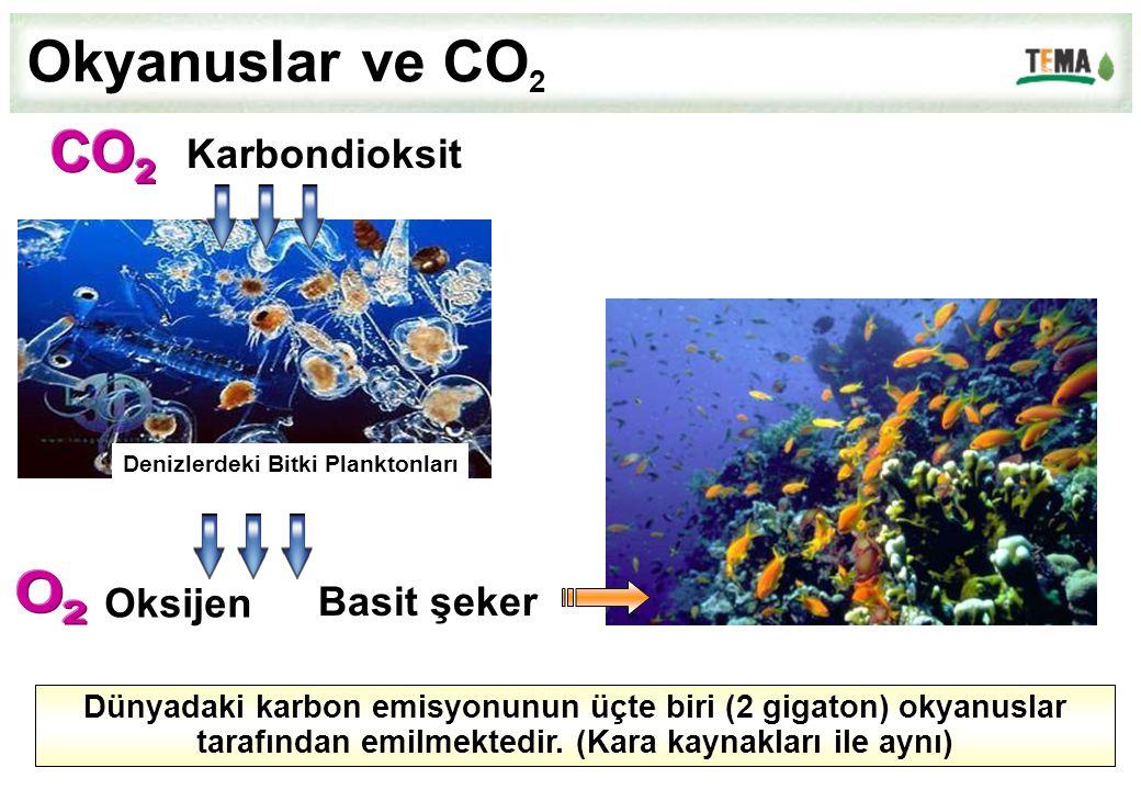 Okyanuslar ve CO2 CO 2 O 2 Karbondioksit Oksijen Basit şeker