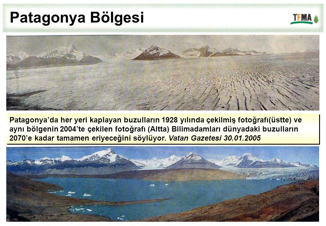 Patagonya Bölgesi Patagonya'da her yeri kaplayan buzulların 1928 yılında çekilmiş fotoğrafı(üstte) ve.