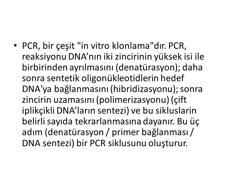 PCR, bir çeşit in vitro klonlama dır