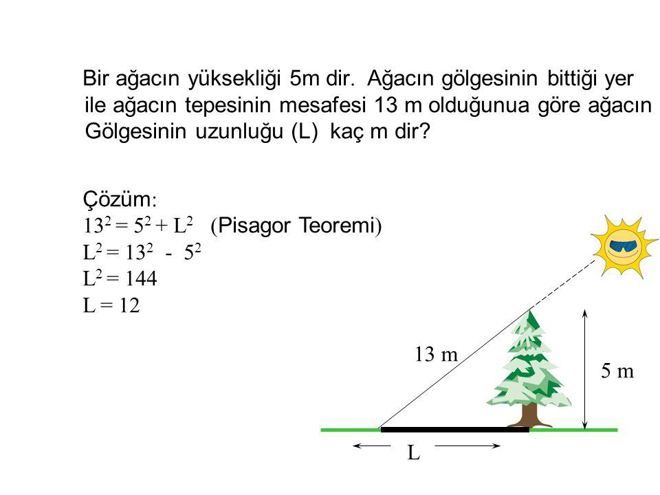 Bir ağacın yüksekliği 5m dir. Ağacın gölgesinin bittiği yer