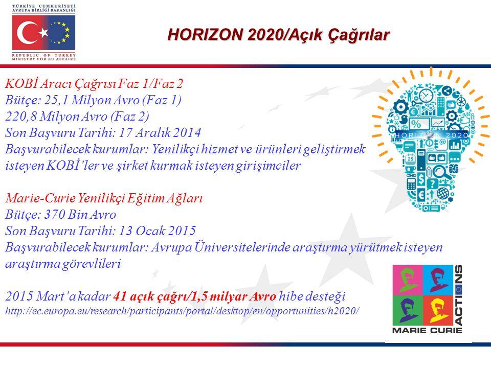 HORIZON 2020/Açık Çağrılar