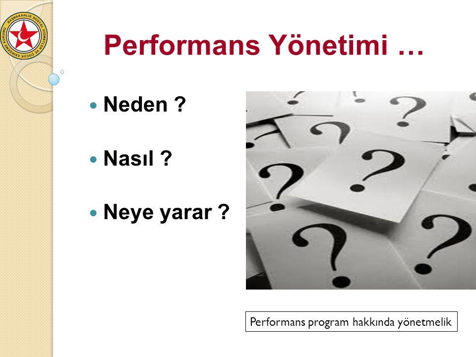 Performans program hakkında yönetmelik