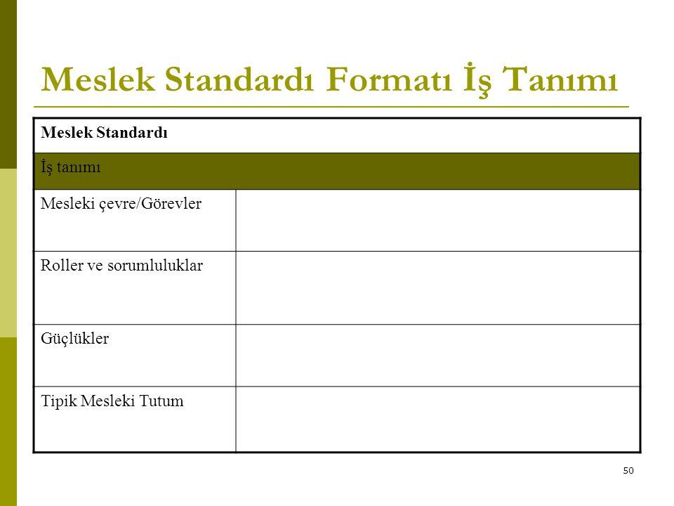Meslek Standardı Formatı İş Tanımı