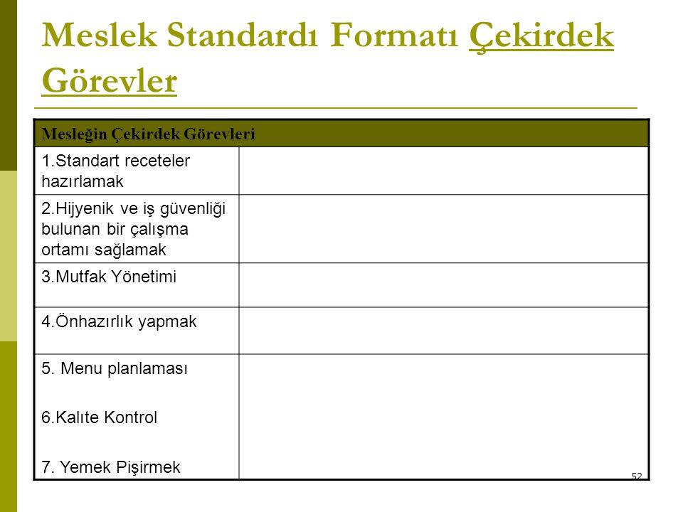 Meslek Standardı Formatı Çekirdek Görevler