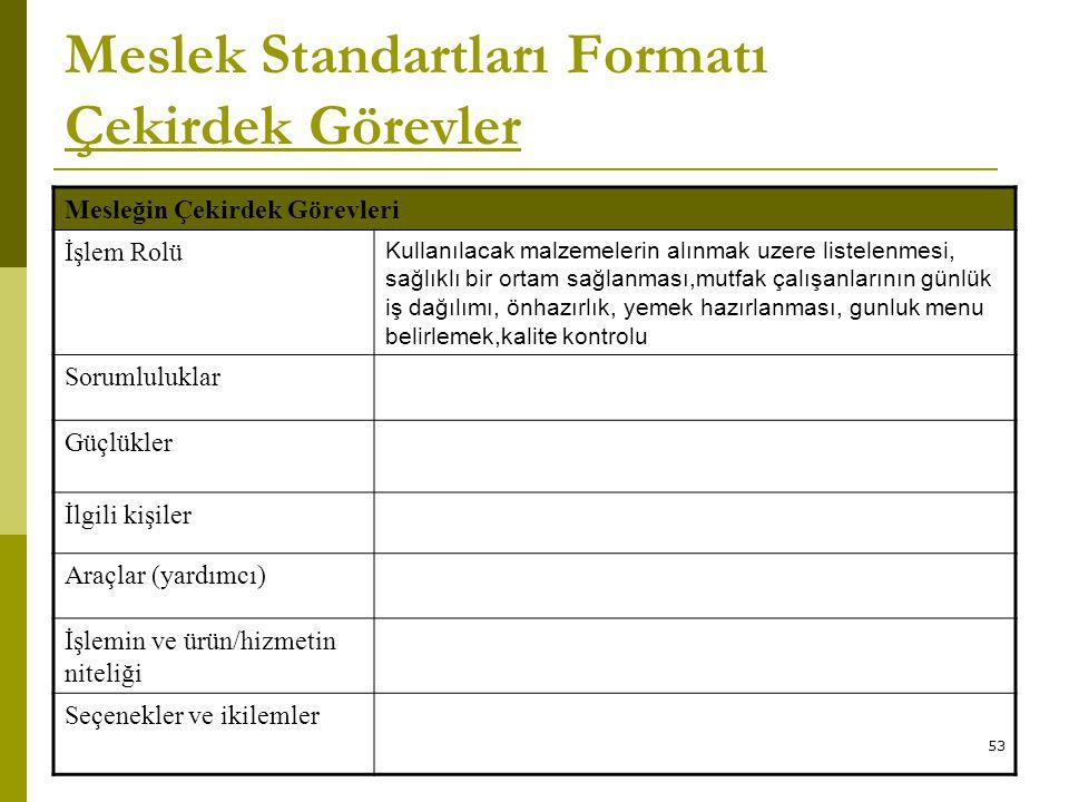 Meslek Standartları Formatı Çekirdek Görevler