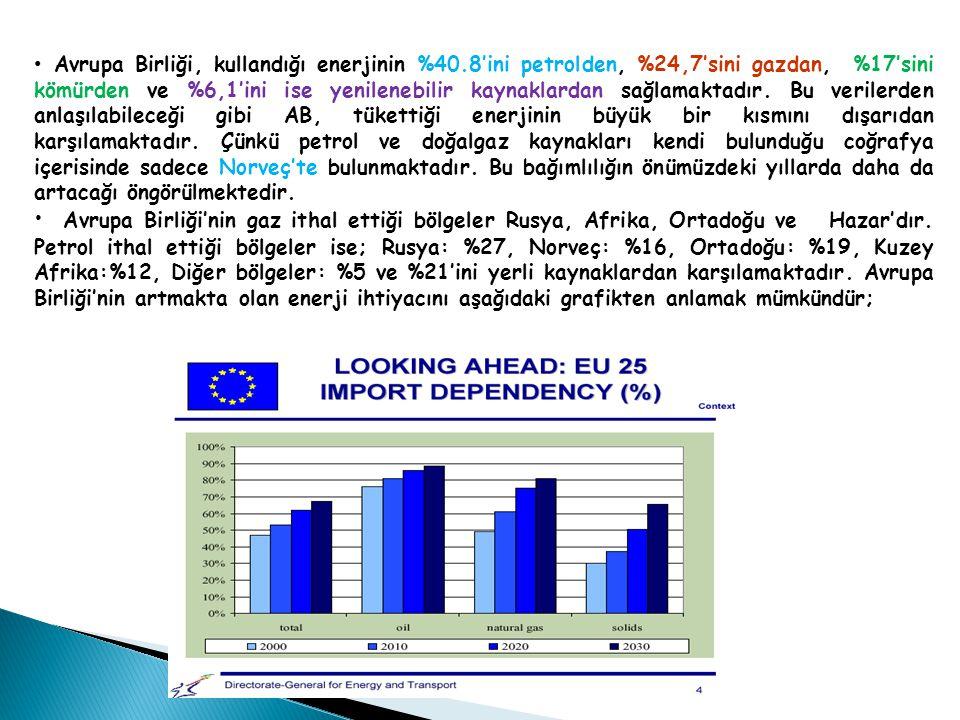 Avrupa Birliği, kullandığı enerjinin %40