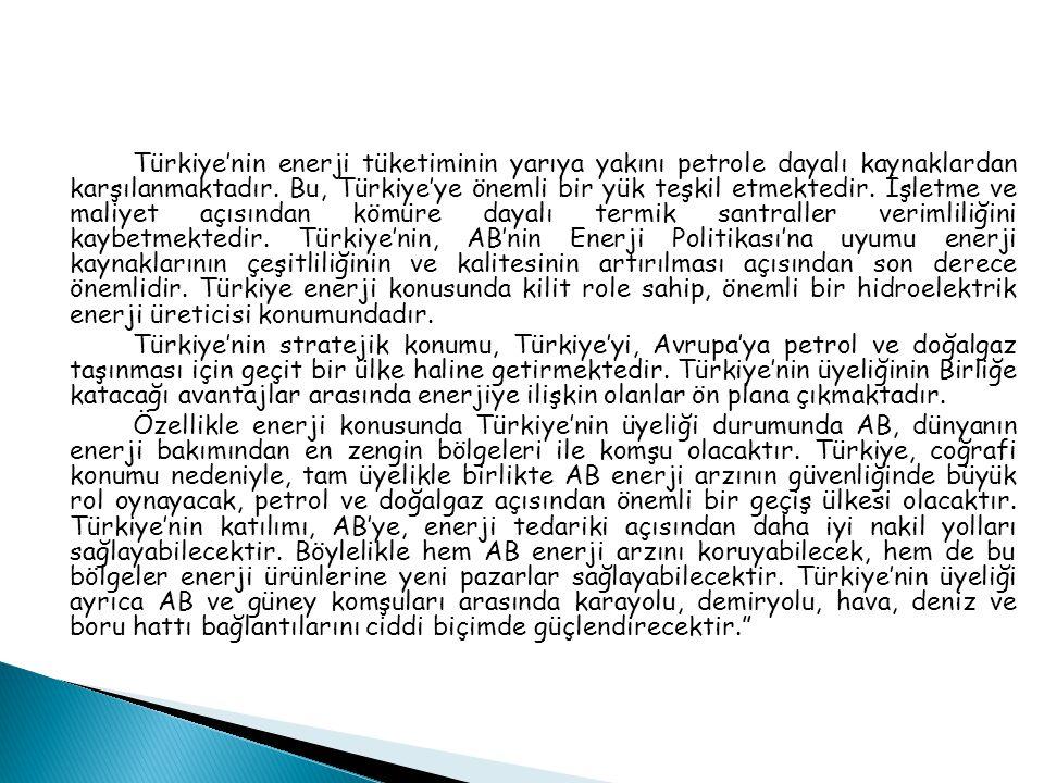 Türkiye'nin enerji tüketiminin yarıya yakını petrole dayalı kaynaklardan karşılanmaktadır. Bu, Türkiye'ye önemli bir yük teşkil etmektedir. İşletme ve maliyet açısından kömüre dayalı termik santraller verimliliğini kaybetmektedir. Türkiye'nin, AB'nin Enerji Politikası'na uyumu enerji kaynaklarının çeşitliliğinin ve kalitesinin artırılması açısından son derece önemlidir. Türkiye enerji konusunda kilit role sahip, önemli bir hidroelektrik enerji üreticisi konumundadır.