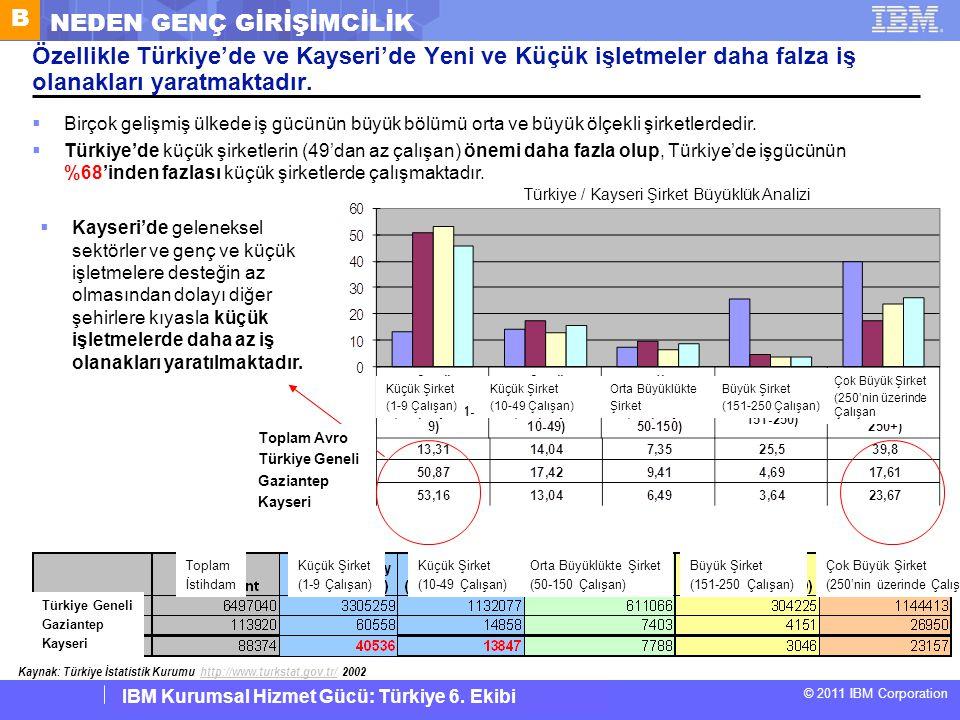 Türkiye / Kayseri Şirket Büyüklük Analizi