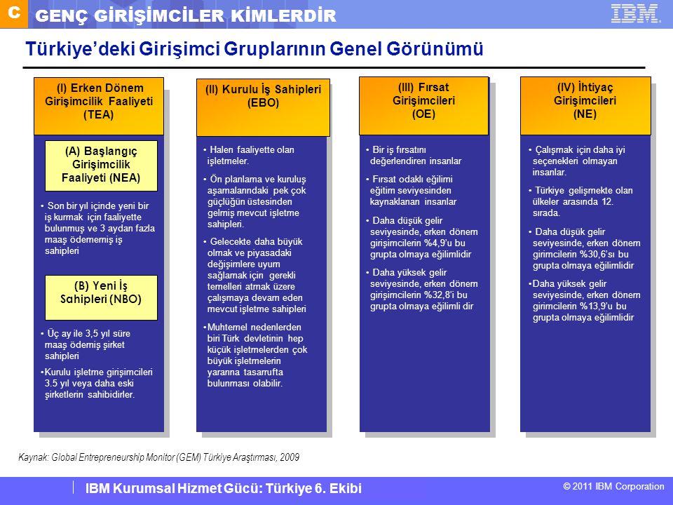Türkiye'deki Girişimci Gruplarının Genel Görünümü