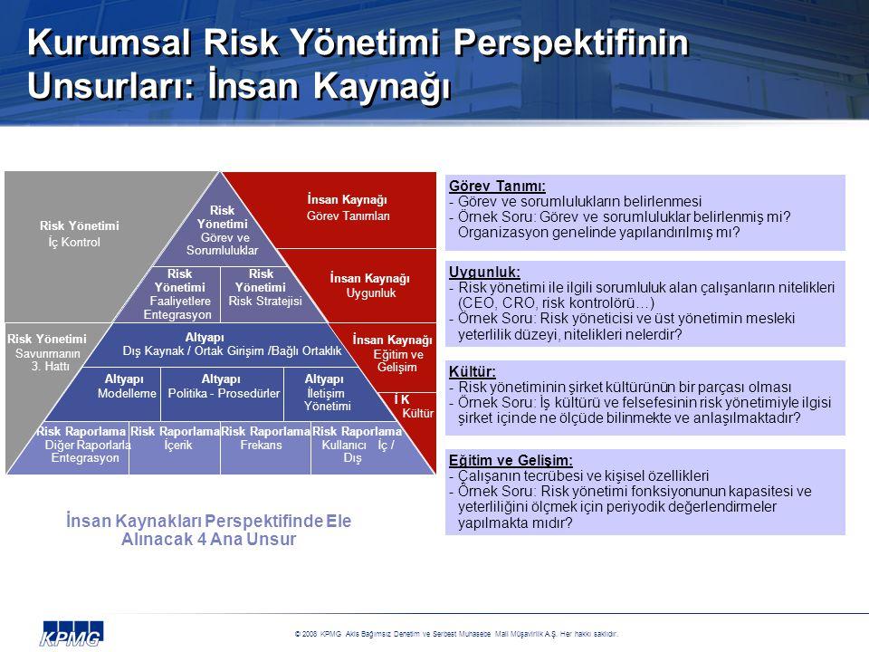 Kurumsal Risk Yönetimi Perspektifinin Unsurları: İnsan Kaynağı