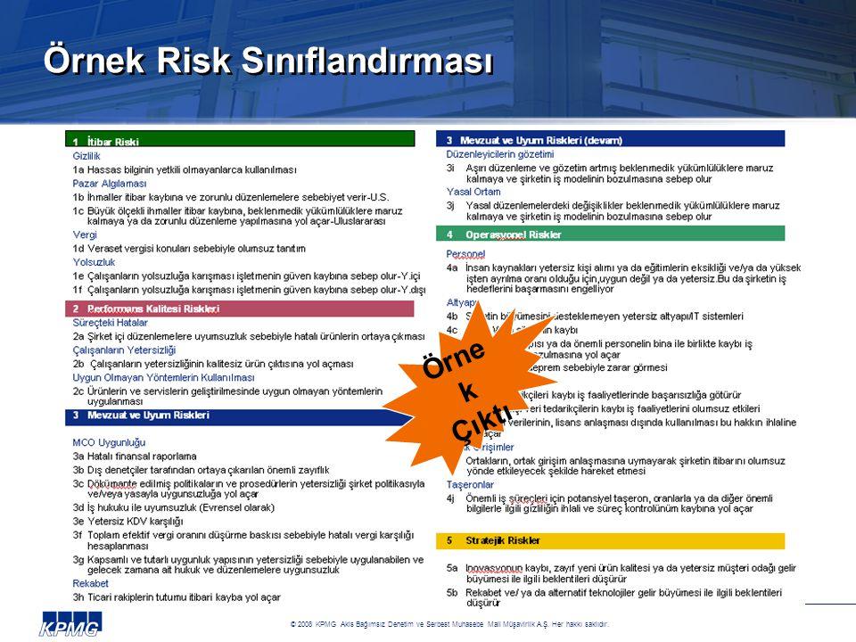 Örnek Risk Sınıflandırması