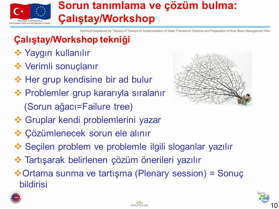 Sorun tanımlama ve çözüm bulma: Çalıştay/Workshop